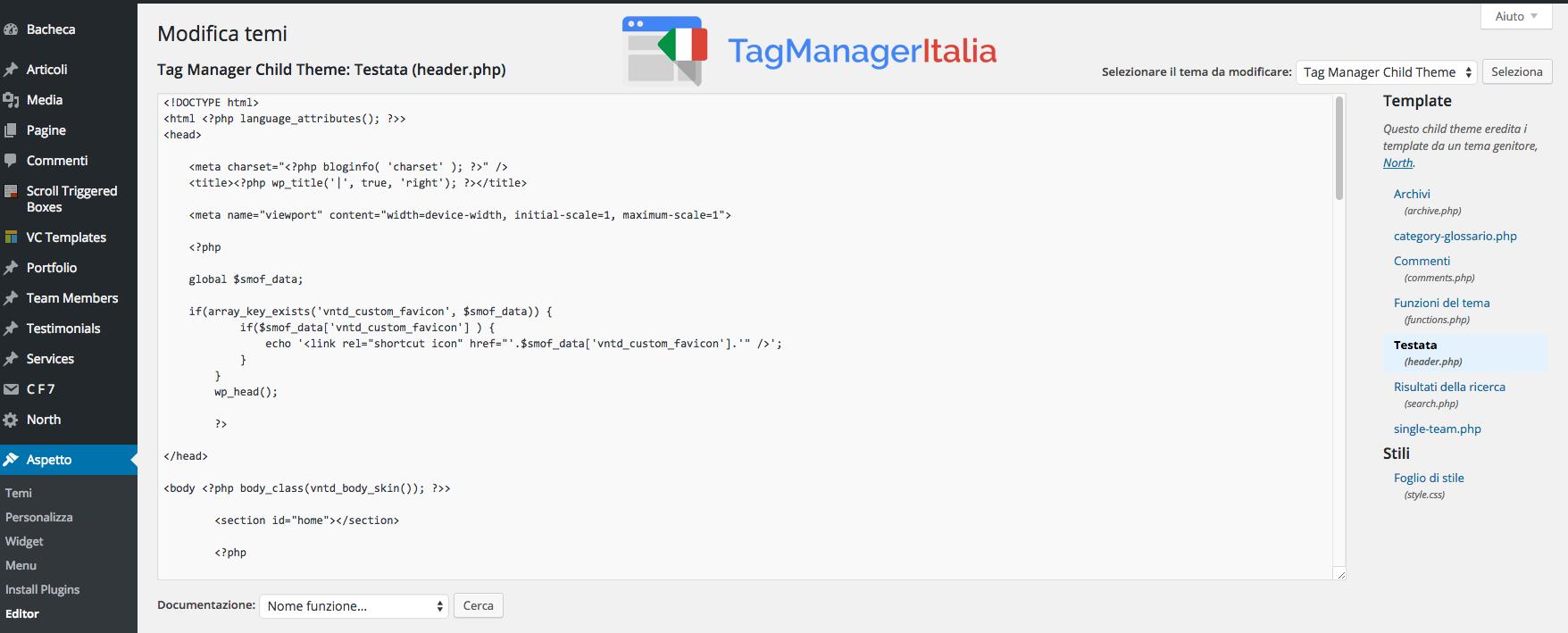 Installare Google Tag Manager Tramite WordPress 2
