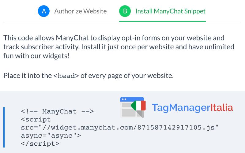 script manychat da installare google tag manager