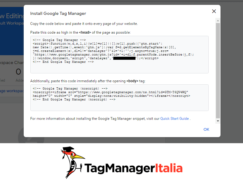 Installare Google Tag Manager con WordPress 1