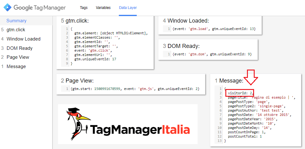 user id nel data layer google tag manager