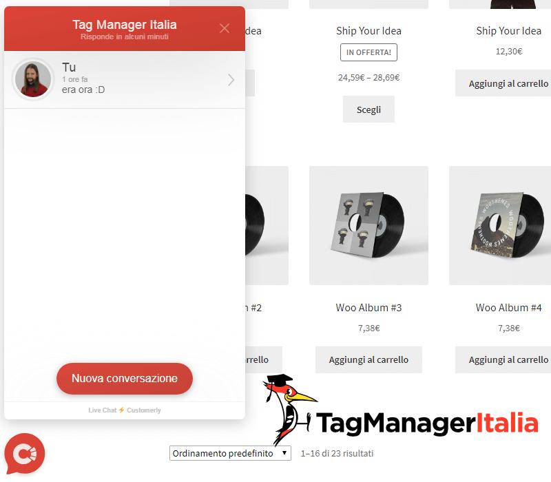 verifica widget customerly google tag manager