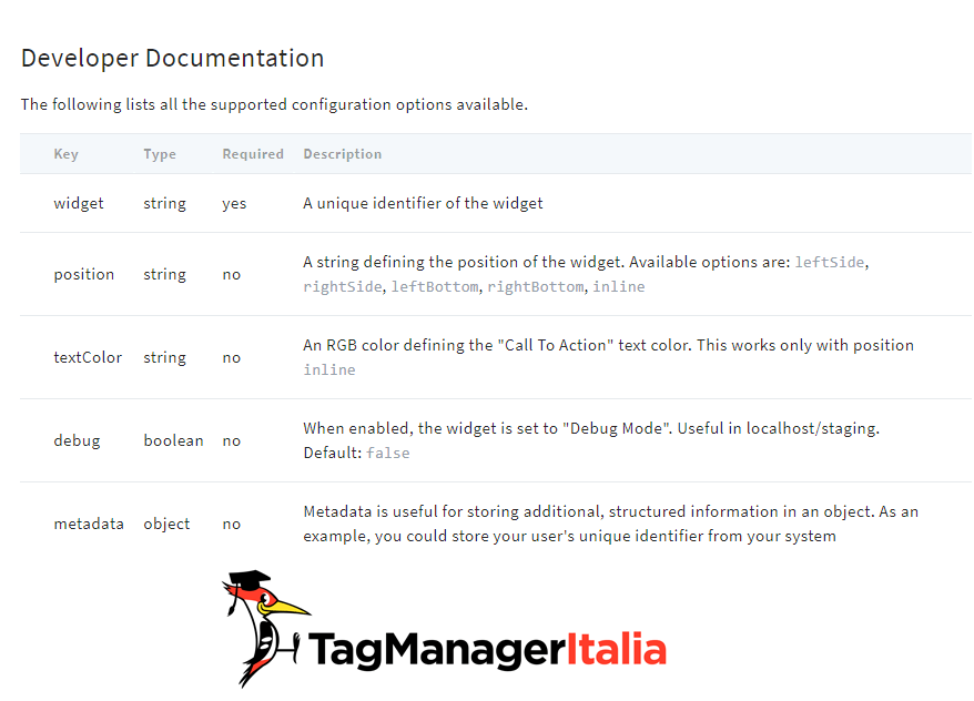Emojics Documentation Code options for Google Tag Manager
