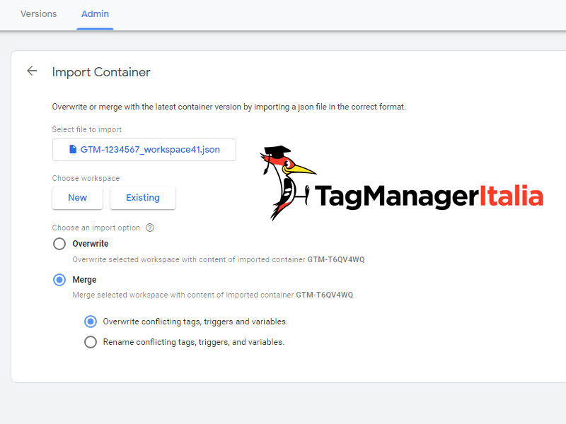 importa contenitore google tag manager