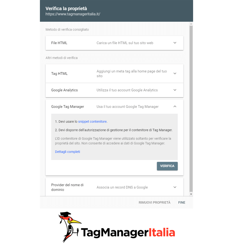 google tag manager e search console