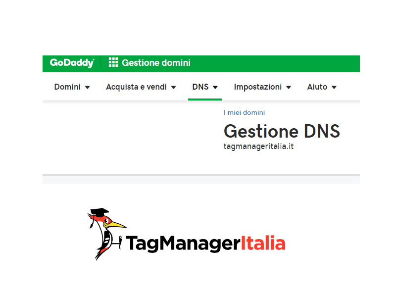 step 3 login godaddy to add DNS records