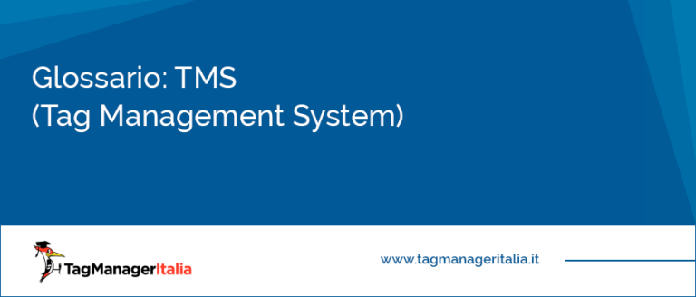 TMS (Tag Management System)