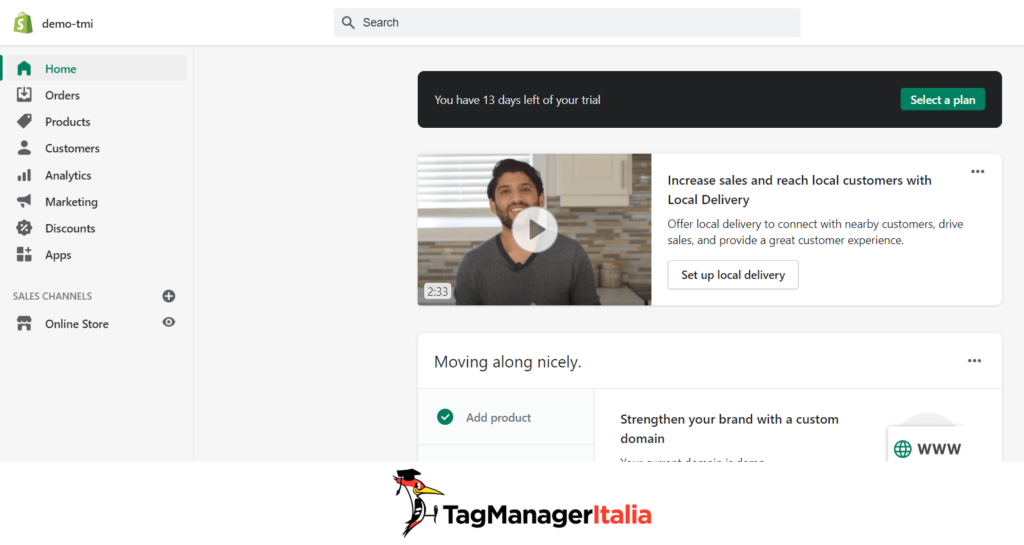 Dashboard Shopify Google Tag Manager
