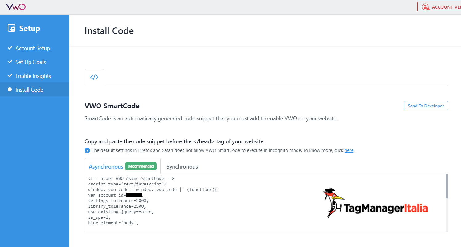 snipped code VWO
